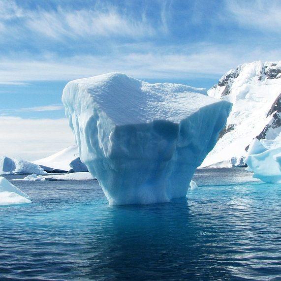 Жизнь айсберга
